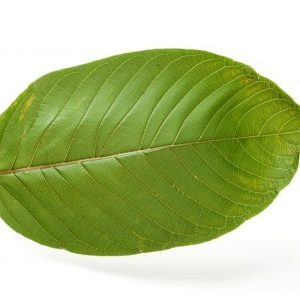 Group logo of Kratom