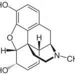 Group logo of Opioids